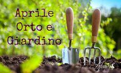 lifeme: MESE DI APRILE :SEMINA, TRAPIANTI,LAVORI,RACCOLTA NELL'ORTO E GIARDINO #aprile #giardino #giardinaggio #orto #balcone #potatura #innesti