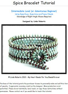 Beading Tutorial - Spice Bracelet Pattern by Linda Roberts Bead Jewellery, Seed Bead Jewelry, Beaded Jewelry, Handmade Jewelry, Beaded Bracelets, Seed Beads, Jewelry Patterns, Bracelet Patterns, Bead Patterns