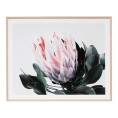 Add the finishing touches to your home with homewares such as art & wall decor, soft furnishings, and numerous accessories. Vibrant Colors, Tapestry, Plants, Painting, Wall Hangings, Art, Building, House, Decor