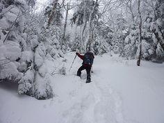 Neige épaisse au Balsam Crédit photo : N. Beaulieu