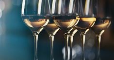 Check out our guide to get your white wine basics right such as the different white wine varietals, pairing them with food and how to serve them right. Wine Varietals, Wine Merchant, Vitis Vinifera, Expensive Wine, Wine Case, Wine Wednesday, Cheap Wine, Cabernet Sauvignon, Wine Tasting