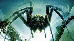 """Ice Spiders (Wallpaper), Wallpaper for """"Ice Spiders"""". """"Ice Spiders"""" is a 2007 horror/Sci-fi movie that premiered on June 9, 2007 on the Sci Fi Channel, with giant spiders. It is directed by Tibor Takács."""