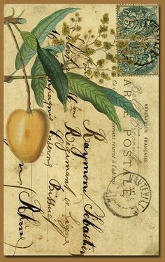 Botanical Mail art