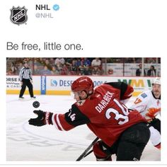 NHL got jokes - Pinundpin - Bilder für Sie Hockey Players, Caps Hockey, Hockey Goalie, Soccer, Funny Hockey Memes, Canadian Memes, Hockey Baby, Hockey Girls, Happy Birthday Wishes For Him