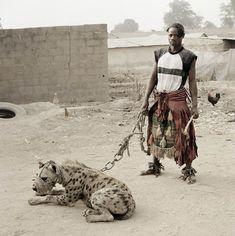 The Hyena Handlers of Nigeria Photograph by Pieter Hugo