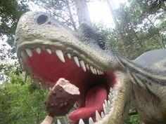 dinosaur eating a magnum
