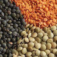 Candida Diet Power Foods