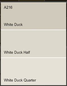 Dulux white duck- I would recommend half or quarter strength for a more neutral look. This would look good with the Sage/Eucalyptus green door.