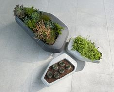 Designed by leading architects Stefan Antoni and Greg Truen of SAOTA, Steen planters are made from glass reinforced concrete, which is lighter and stronger than regular concrete. Large Planters, Outdoor Planters, Indoor Outdoor, Outdoor Living, Self Watering Plants, Contemporary Outdoor Furniture, Concrete Color, Concrete Crafts, Kitchen And Bath Design