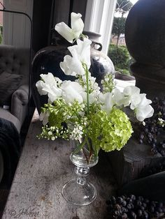 Elfies home: Update en bezoek De Violier at Home