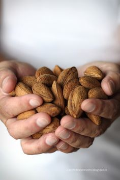 Visit the Nut House