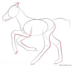 How to draw a foal step by step. Drawing tutorials for kids and beginners.