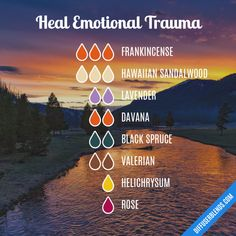 Heal Emotional Trauma - Essential Oil Diffuser Blend