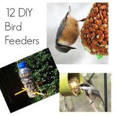 12 DIY Bird Feeders