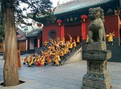 The early bird really does catch the worm! If you visit Shaolin in the summer months we strongly recommend you be down at the temple door early in the morning (around 5.30-6am). Trust us you'll be rewarded