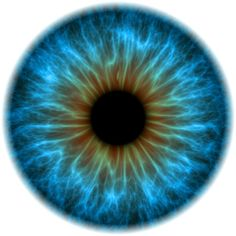 Na Semana Nacional de Combate à Cegueira pelo Glaucoma (20 a 24 de maio), a Sociedade Brasileira de Glaucoma (SBG) promoverá atividades de prevenção à doença em São Paulo. Durante os dias, o vão livre do MASP terá, entre 9h e 17h, terá uma sala de exposição sobre as dificuldades causadas pelo perda de visão, com deficientes visuais como guias.