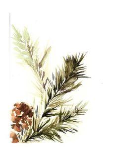 Art Print: Pine Leaves by Sophia Rodionov : 12x9in