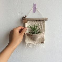 air plants woven wall hanging, woven wall hanging, home decor Luftpflanzen gewebt Wandbehang gewebt Wandbehang Wohnkultur Hanging Plant Wall, Woven Wall Hanging, Hanging Fabric, Hanging Basket, Hanging Art, Tapestry Weaving, Air Plants, Plants Indoor, Indoor Herbs