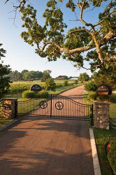 Arrington vineyards TN