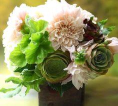 Blush dahlias and succulent bouquet