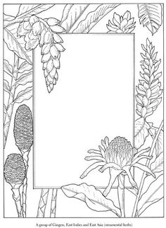 Coloring page with flowers, plants around an open area for adding your own elements - good inspiration piece for various projects.