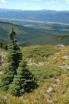 Kootenai River Valley in Kaniksu National Forest