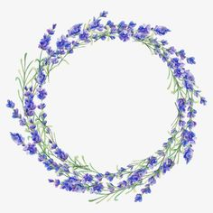 Watercolor lavender frame - Buy this stock illustration and explore similar illustrations at Adobe Stock Wreath Watercolor, Watercolor Cards, Watercolor Flowers, Vintage Flowers Wallpaper, Flower Wallpaper, Plant Illustration, Watercolor Illustration, Flower Frame, Flower Art