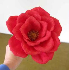 Red crepe paper rose tutorial, excellent with do's and don't, very helpful