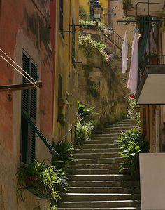 | ♕ | Stairway in Monterosso | by © John | via ysvoice