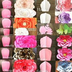 Modelos de flores gigantes de papel - Giant flower template and what the flower looks like Giant Paper Flowers, Diy Flowers, Fabric Flowers, Wedding Flowers, Flower Diy, Paper Flowers How To Make, Happy Flowers, Diy Paper, Paper Crafting