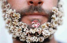 homens com barba floreada - Pesquisa Google