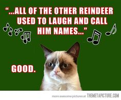 I always felt so bad for Rudolph...but Grumpy cat makes it funny