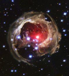 Un Eco de Luz V838 Mon. Por causas desconocidas, la superficie de la estrella variable V838 Mon repentinamente empezó a expandirse y se convirtió en la estrella más brillante de la Vía Láctea en enero de 2002; para de forma repentina, desvanecerse. Un destello como éste jamás había sido visto. Aunque parece estar expulsando material, lo que vemos es el eco de la luz procedente del destello. El destello se refleja en los anillos más distantes del complejo de polvo que rodeaba la estrella.