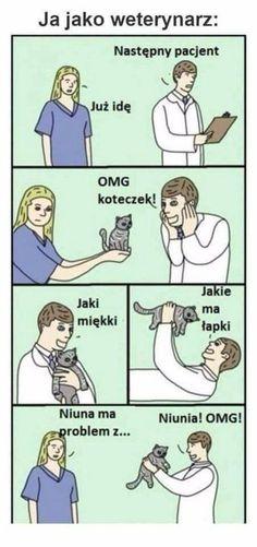 Funny, god, and lol: if i was a veterinarian dana, please bring Cat Memes, Funny Memes, Jokes, Wtf Funny, Hilarious, Becoming A Veterinarian, Dramatic Play, Humor, Warrior Cats