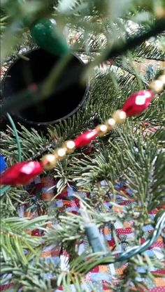 dont bend under the tree to keep water in the stand - What Do You Put In Christmas Tree Water