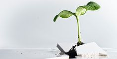 Es geht nicht allein um Wachstum und Exit | Gründerszene