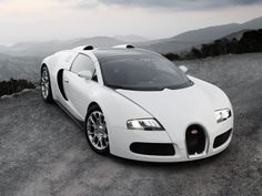 white bugatti veyron wallpaper | Cars Hd Wallpapers
