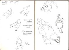 Chickens #drawing #sketchbook #sketches #art #animals Sketchbook Drawings, Sketches, Observational Drawing, Animation, Artwork, Blog, Animals, Drawings, Work Of Art