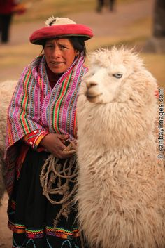 Cusco. Indigenous woman with her alpaca near the Saqsaywamán Ruins...