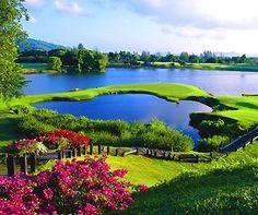 Hilton Head Island Golf Courses in South Carolina.