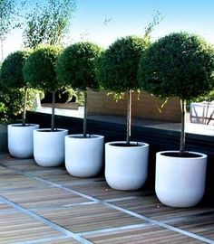 Today, I will reveal to you some cool and charming garden features that will turn your garden into your small paradise. So, take a tour around my 20 Stylish Garden Decor Ideas That Will Impress You Outdoor Planters, Garden Planters, Outdoor Gardens, Planter Pots, Lavender Planters, Container Garden, Topiary Trees, Potted Trees, Trees In Pots