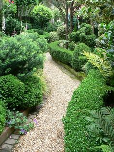 The Garden Aesthetic. love the gravel stone curving garden path and all the beautiful green plantingsGarden path.The Garden Aesthetic. love the gravel stone curving garden path and all the beautiful green plantings Unique Garden, Diy Garden, Shade Garden, Dream Garden, Lush Garden, Herb Garden, Path Design, Landscape Design, Design Ideas