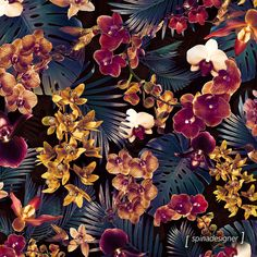 Orquídeas Tropicais | Society6 « WALTER SPINA DESIGN