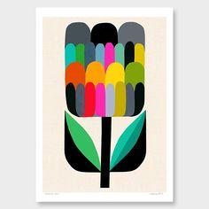 Waratah Bud Art Print by Inaluxe endemic Art And Illustration, Graphic Design Illustration, Mid Century Art, Mid Century Modern Art, Nz Art, Arte Popular, Art Plastique, Fine Art Paper, Art Lessons