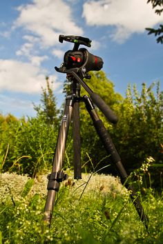 That´s my personally perfect Travel-Rig...the tripod carries 10 KG and just weights 980 gr.  The head is a special photo-videohead with nearly 360 degrees of freedom.