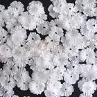 Mini White Fabric Flowers - pack of 50