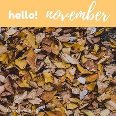 Parece mentira, hace un año empezaba a maquinar en mi cabeza la idea de escribir un blog... y ahora dedico una parte importante de mi tiempo a ello: probar recetas y diy, fotos, redactar la entrada... y lo que más me gusta es que cada día aprendo cosas nuevas! . . . . #november #noviembre #funtimeblog #diyblog #blogdemanualidades #blogsingluten #imablogger #mamabloguera #aprendiendocadadia #meencantamitrabajo #bloglife