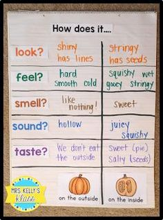 It& October. The leaves are changing and falling. The air is cool and crisp. But most importantly. Fall Preschool Activities, Preschool Science, Preschool Lessons, Kindergarten Classroom, Classroom Activities, Classroom Ideas, Reggio Classroom, October Preschool Themes, Kindergarten Science Projects