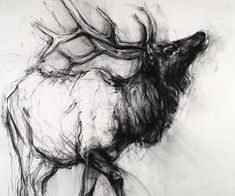 Find images and videos about beautiful, art and black and white on We Heart It - the app to get lost in what you love. Animal Sketches, Animal Drawings, Art Drawings, Arte Grunge, Drawing Course, Charcoal Art, Deer Art, Artist Sketchbook, Art Courses