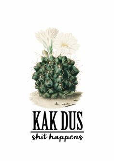 Kaart - KAK DUS shit happens Sign Quotes, True Quotes, Best Quotes, Qoutes, Funny Quotes, Cactus Quotes, Toilet Quotes, Weed Humor, Happy Wishes